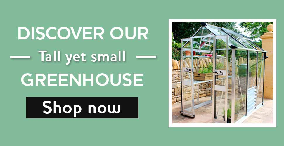 tall yet small greenhouse
