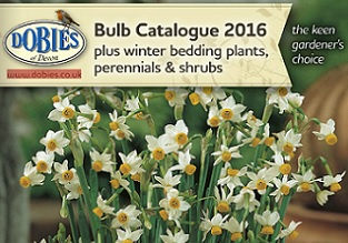 dobies 2016 bulb catalogue