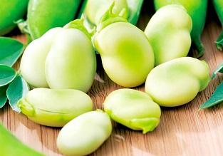 November vegetables to sow