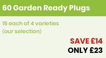 60 Garden ready Offer