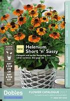 dobies flower catalogue 2017