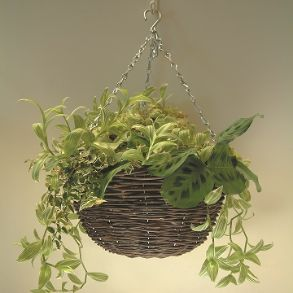 Rattan Round Baskets - Save up to 57%