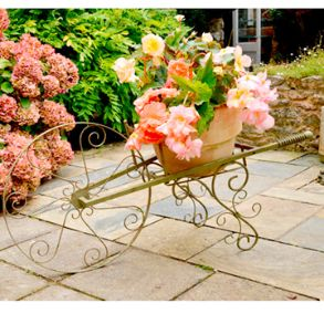 Wheelbarrow Plant Stand - Save £20