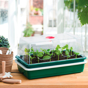 Containers For Growing