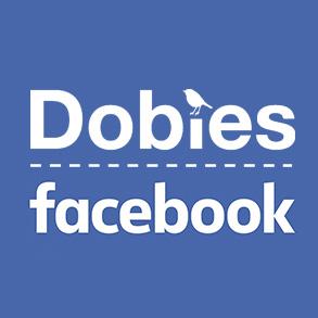 Dobies on Facebook