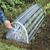 Cloches and Plant Protection