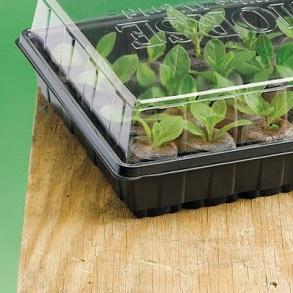 Flower Seeds and Propagator