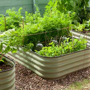Veggie Beds - Save Up To 50%