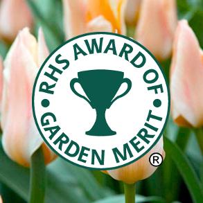 RHS Award Winners