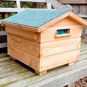 Bumblebee Villa & Colony