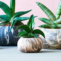 Stone Planter -13cm