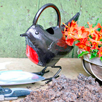 Watering Can - Robin