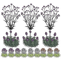 Image of 1 Square Metre Garden Pack
