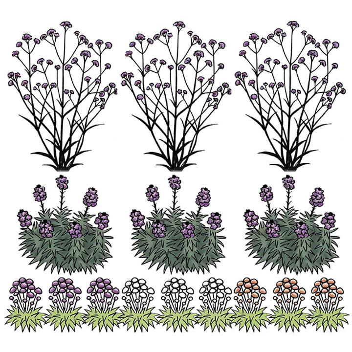 1 Square Metre Garden Pack