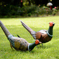 Pheasant Garden Decoration