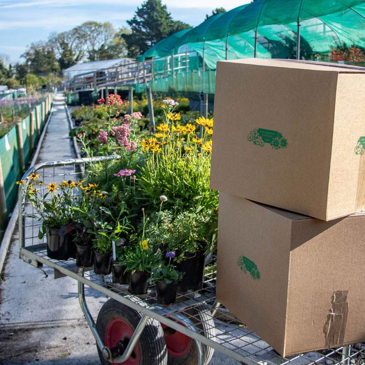 Nursery Autumn Clearance Pack - Worth £75