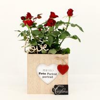 Rose in Photo Holder