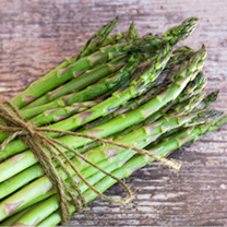 This first-class asparagus produces tall, slender, high quality spears with tight green buds. Particularly delicious steamed, stir-fried or sauted and