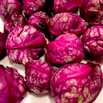 Brussels Sprouts Seeds - Red Rubine