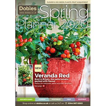 Dobies Spring Planner Catalogue