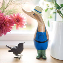 Image of Gardening Ducks - Mr Duck