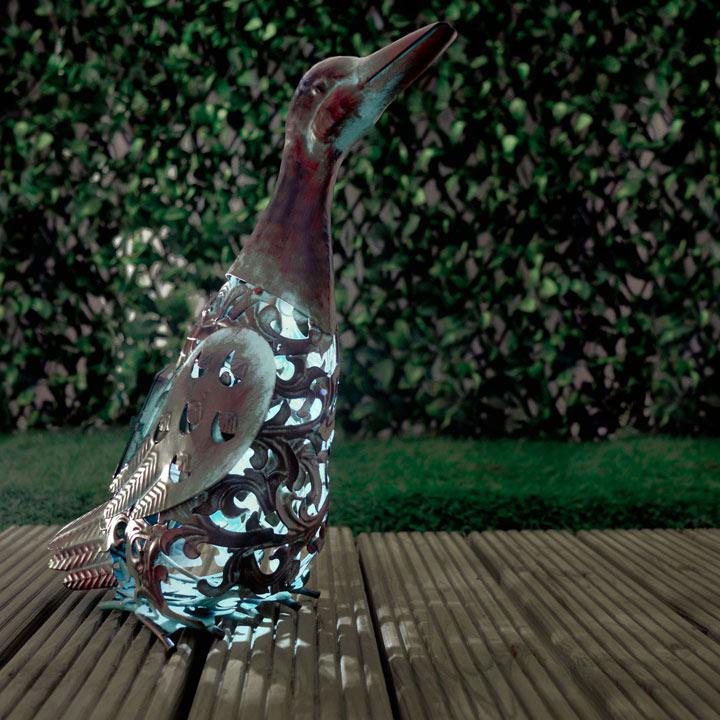 Ornate Solar Duck