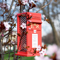 Postbox Peanut Bird Feeder