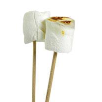 Giant Marshmallow Bag & Toasting Kit!