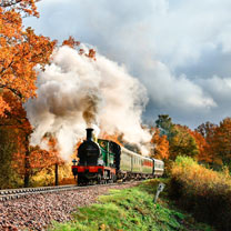 Bluebell Railway Steam Train Trip and Visit to Wakehurst Botanic Garden for Two