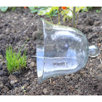 Bell Glass Cloche - Large