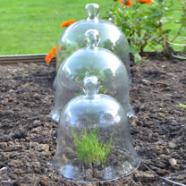 Set of 3 Bell Glass Cloches
