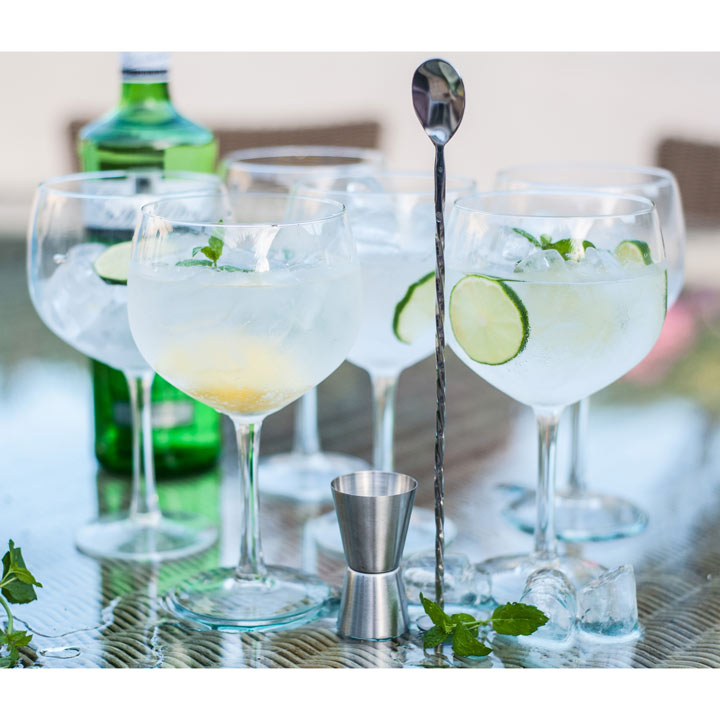 Gin & Tonic Glass Gift Set