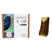 Blackbird Call