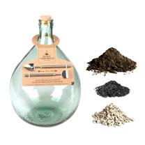 Terrarium Bottle 5L and Starter Kit