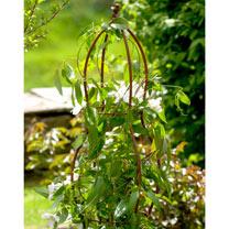 Plant Support 3D Round Bird