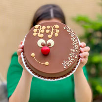 Reindeer Chocolate Smash Cake