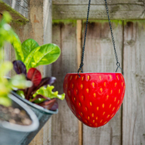 Strawberry Design Flower Pot