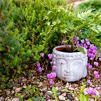 Buddha Flower Pot