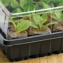 Sow & Grow 12 Jiffy Windowsill Propagator