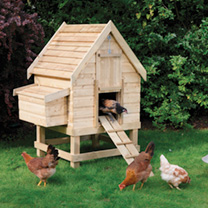 Chicken Coop - Small