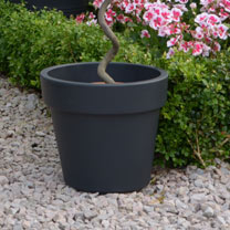 Dark Grey Planter - Top Planter 23cm