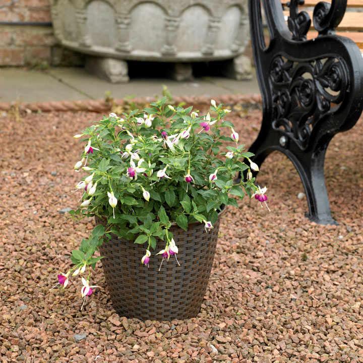 Rattan Effect Plant Pot - Small