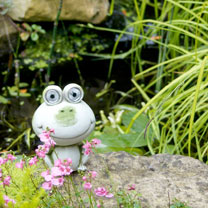 Brighten up your garden with this quirky painted polyresin frog with solar lights. A durable and weatherproof garden feature by day, or a solar light