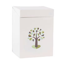 Botanical Large Seed Box