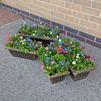 Set of 2 Small and 2 Large Trough Style Plastic Planters