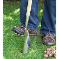 RHS Long Handled Bulb Planter