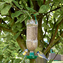 Bird Feeder and Hydration Station