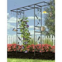Perching Birds Black Arch Feeding Station with Accessories
