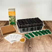 Sweet Pea Success Kit