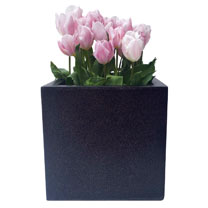 Lux Square Planter - Medium